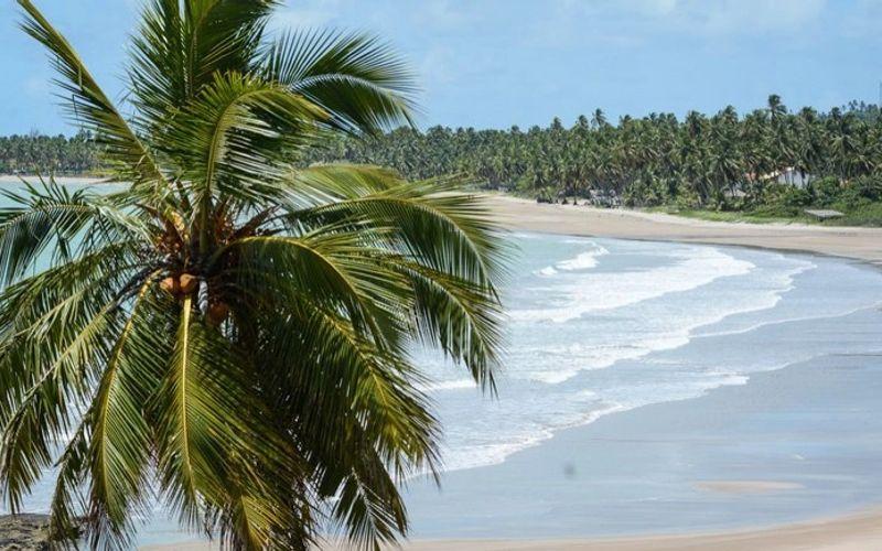 Praia do Patacho, em Porto de Pedras premiada com selo Bandeira Azul